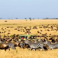 16. Kenya