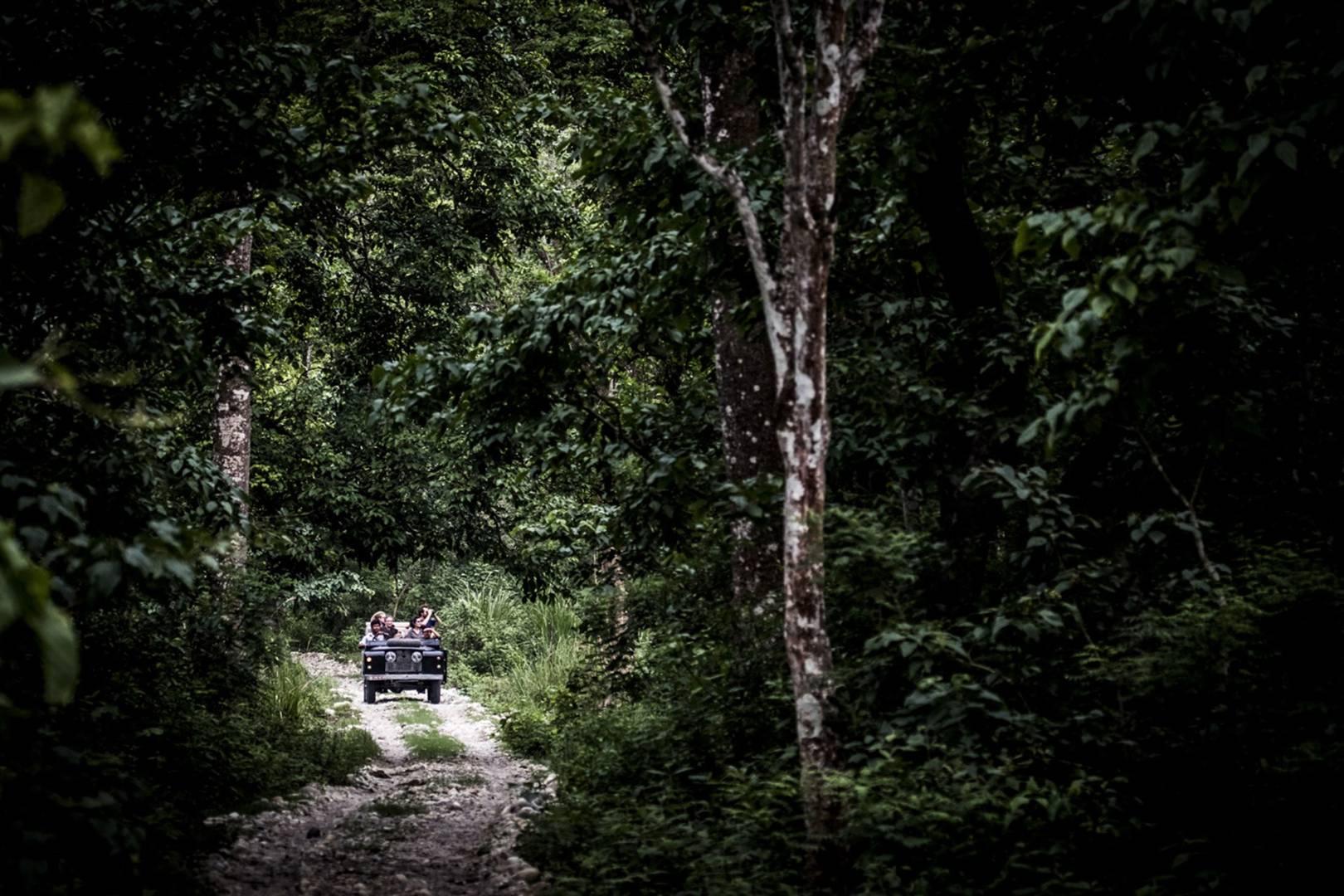 Chitwan National Park, Nepal | CN Traveller