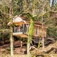 Eco-friendly treehouse, Eworthy