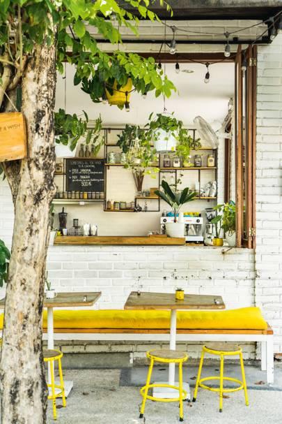 Where to eat in Canggu