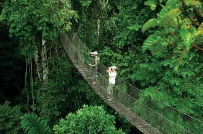 Inkaterra Reserva Amazonica, Peru
