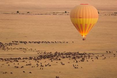 7. GO SAFARI: SERENGETI, TANZANIA