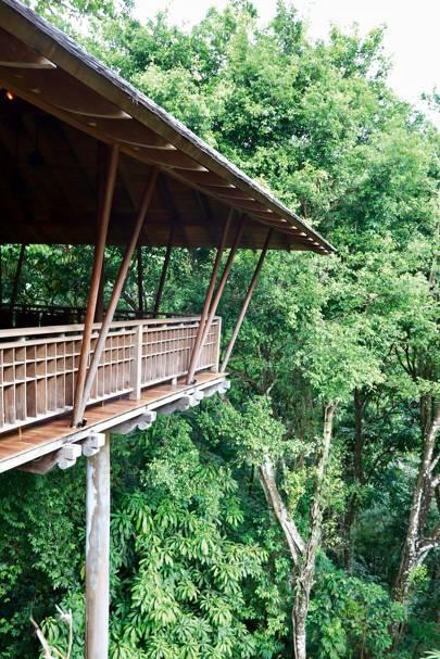 2. The jungle retreat