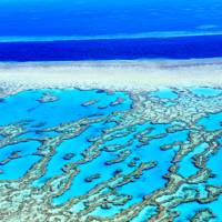 1. Great Barrier Reef