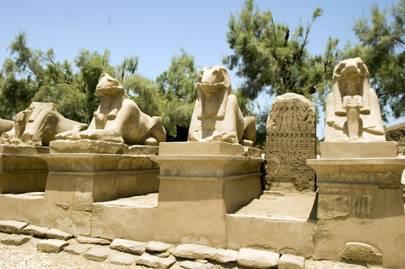Sunshine in Egypt
