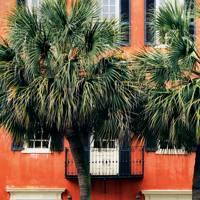 1. Charleston