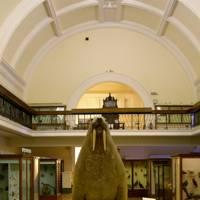 Horniman Museum, Forest Hill, London