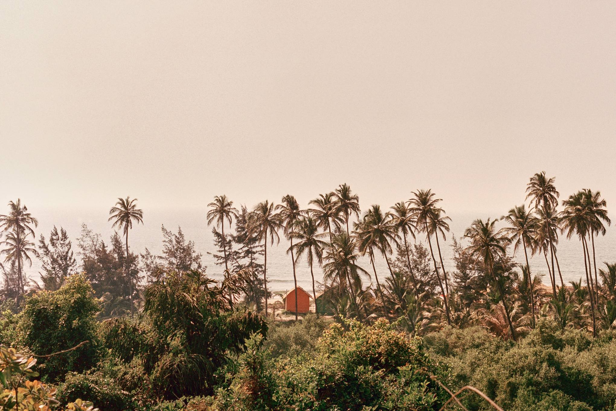 Goa, India | The ultimate guide | CN Traveller