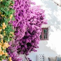 1. Can Sastre, Ibiza