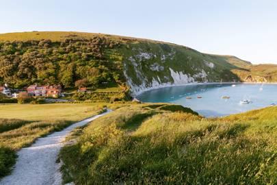3. Dorset