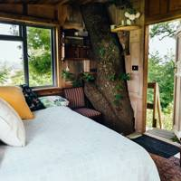 Secluded treehouse, Kent