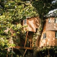 Treetops Treehouse, Devon