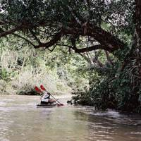 Fate of the Huaorani