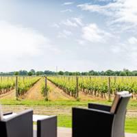 7. Celebrate English Wine Week