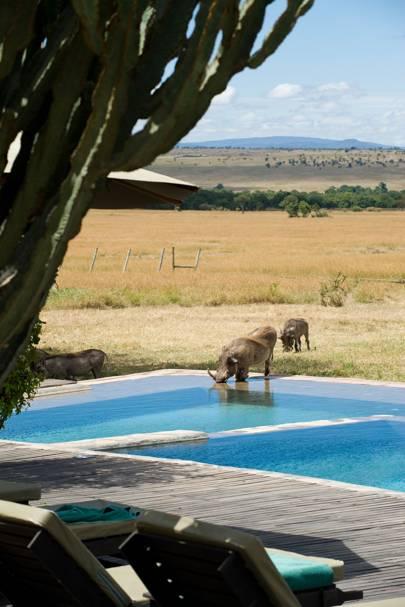 AndBeyond Kichwa Tembo, Kenya