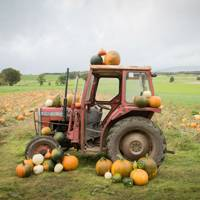 Arnprior Farm, Scotland