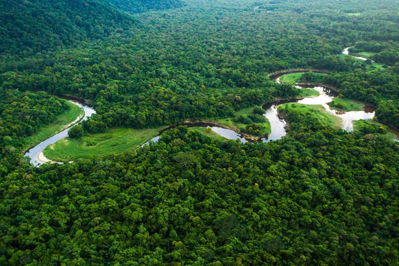 Why you should visit the Amazon right now