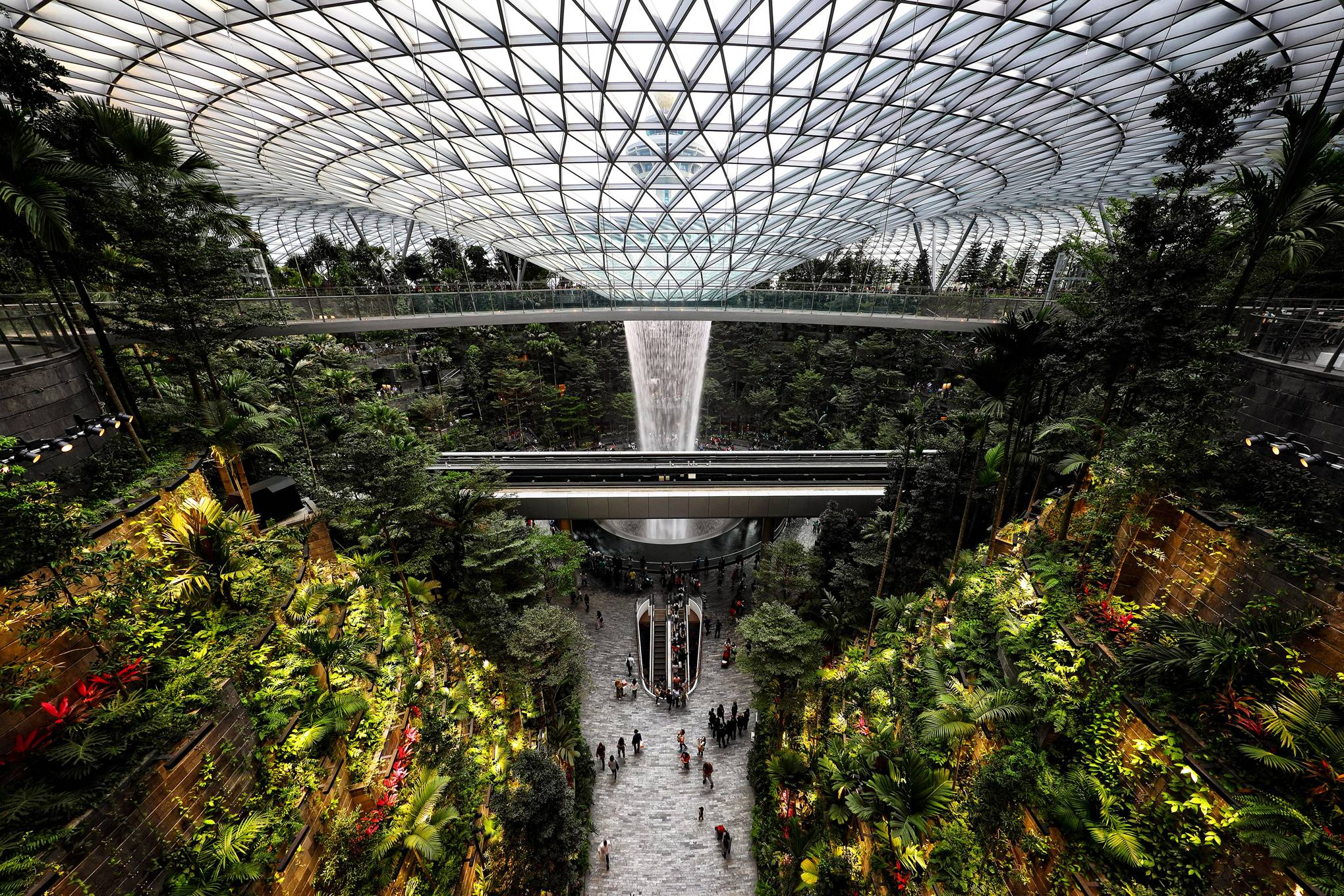 Breathing Space: biophilic architecture