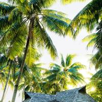 3. Switch to a fresh way of thinking about the South Pacific