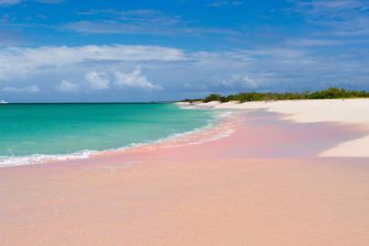 14. Pink Sand Beach, Barbuda