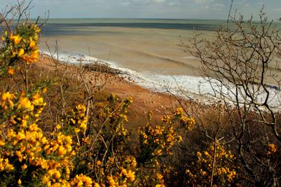 SUSSEX BEACHES