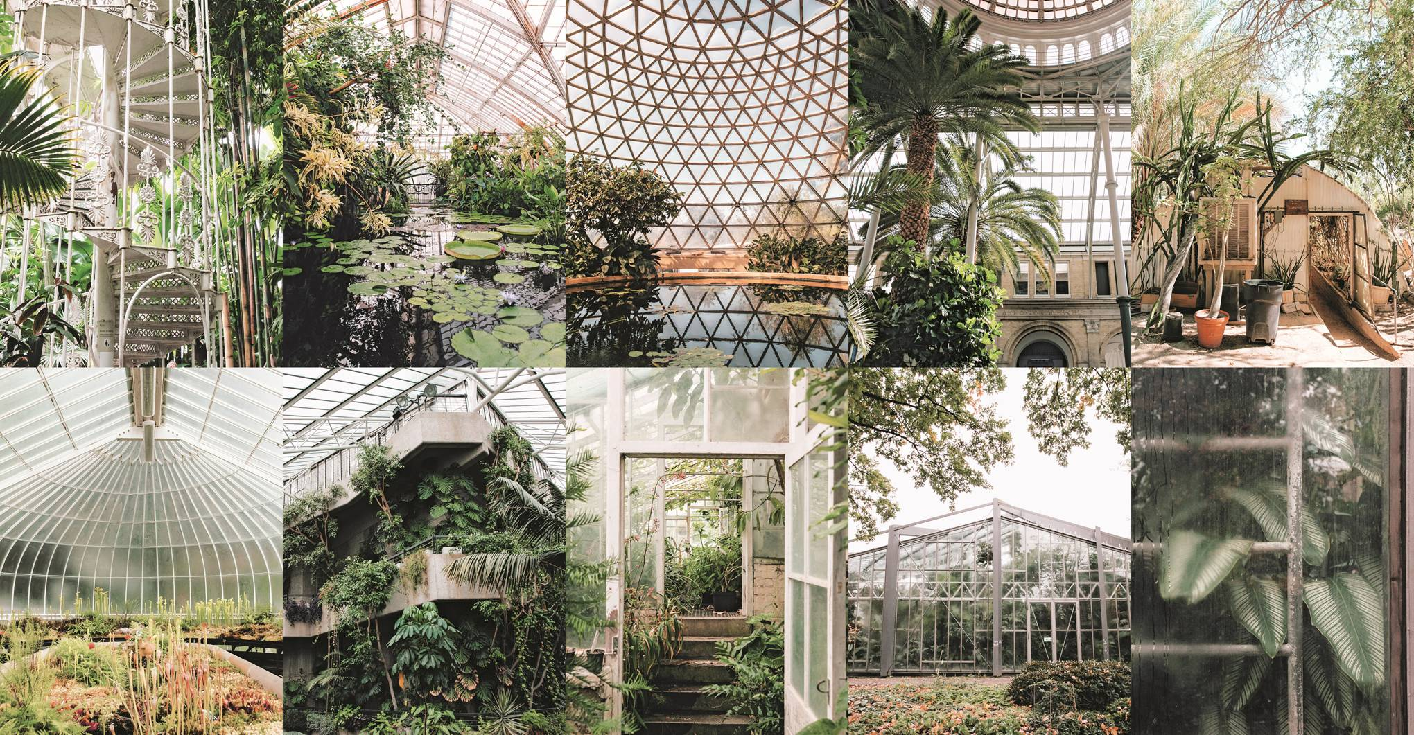 The most beautiful greenhouses in the world