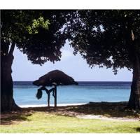Patrick Lichfield's Caribbean