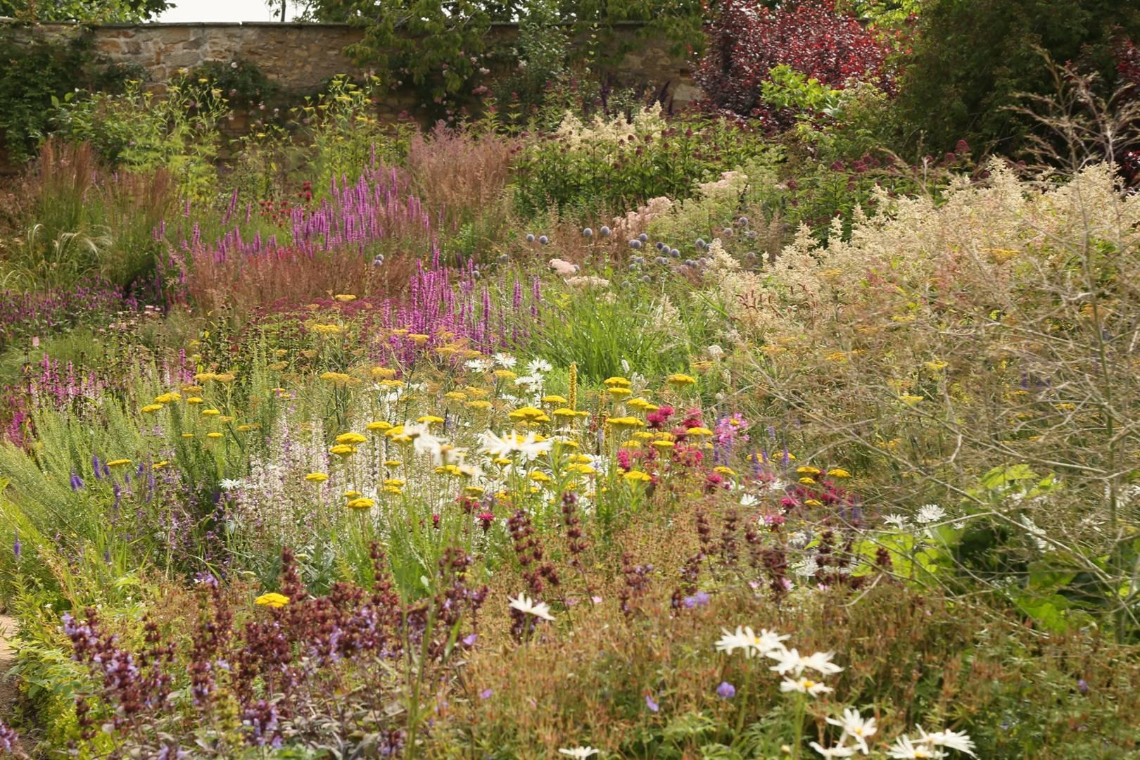 Best gardens for spring flowers in the UK | CN Traveller