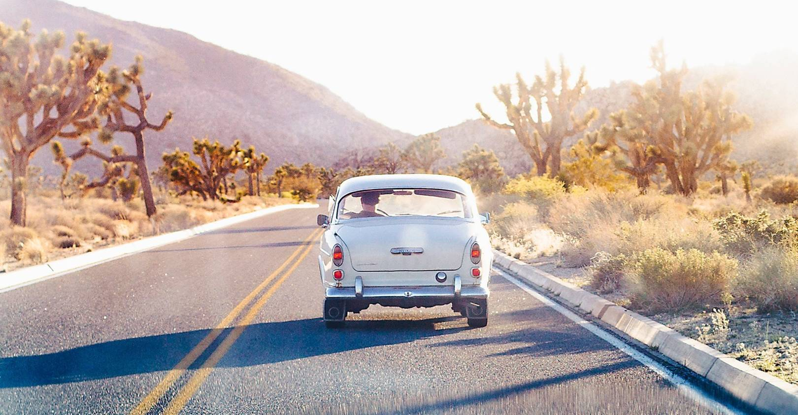 Where to find the magic in Joshua Tree