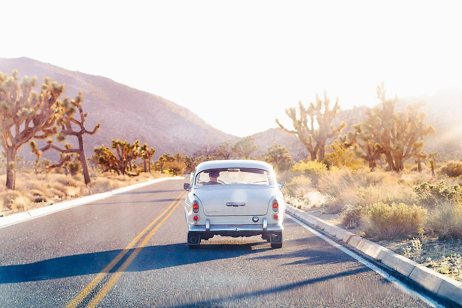 Joshua Tree National Park California The Ultimate Guide Cn Traveller