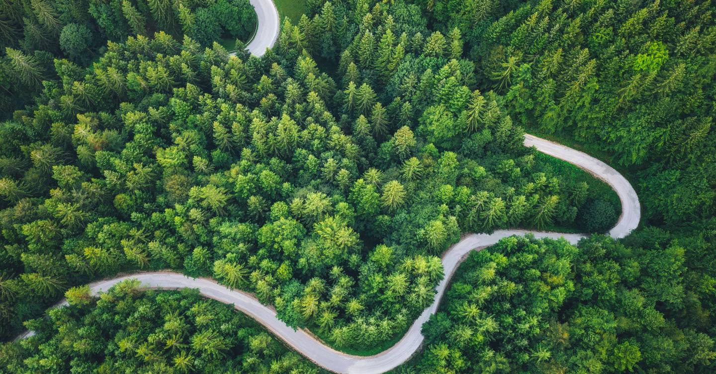 What is sustainable travel? A guide to all the buzz words