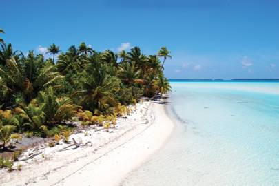 The Brando island resort, French Polynesia