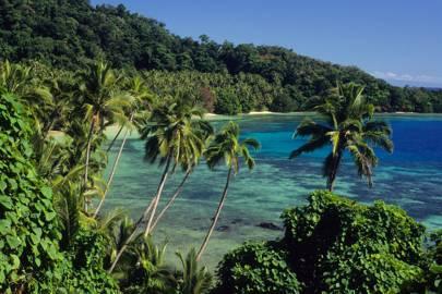 9. Seagrass Bay, Laucala Island, Fiji