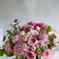 Wild Things Flowers, Mayfair