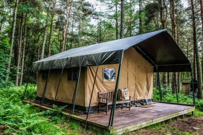 Ruberslaw Wild Woods, Scottish Borders