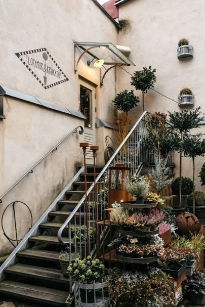 The best flower shop