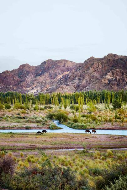 9. A solo road trip through to Andes from Argentina to Chile