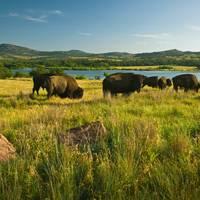 Oklahoma: Wichita Mountains Wildlife Refuge