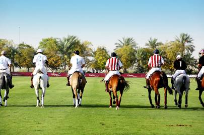 Learning holidays: horse-riding and polo