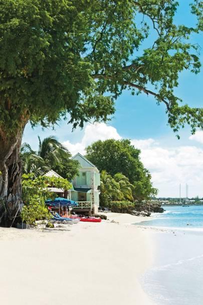 13. Barbados