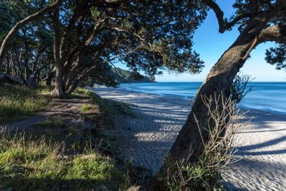 Orokawa Bay, New Zealand