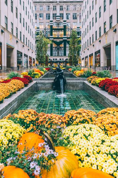7. The Channel Gardens, Rockefeller Center