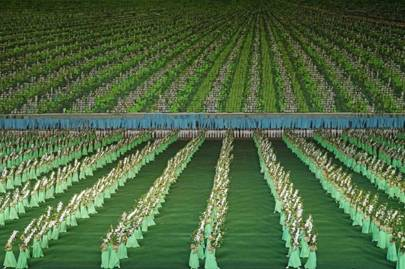 An apple orchard background at the Arirang Games