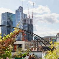 10. The roof garden – The Culpeper, Spitalfields