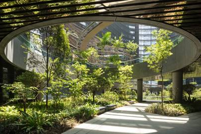 Singapore's biodiversity-boosting high-rises
