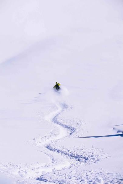 Alta/Snowbird, Utah, USA