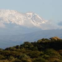 Safari season: Tanzania