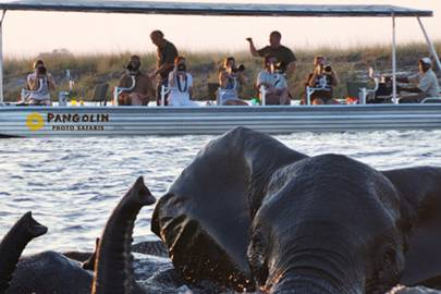 Safari season: Botswana