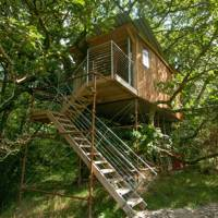 Off-grid treehouses, Snowdonia, Wales
