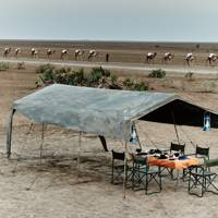 Abaca Camp, Danakil, Ethiopia